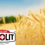 Aplicații ale zeolitului în combaterea dăunătorilor și îmbunătăţirea stării sanitare  a  solurilor